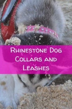 Rhinestone Dog Collars and Leashes