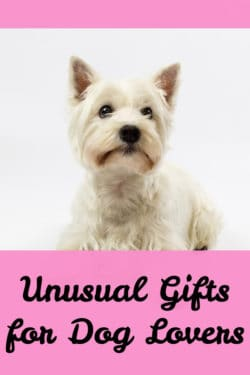 Unusual Gifts fo4r Dog Lovers