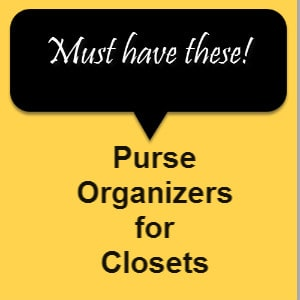 Purse Organizer for Closet