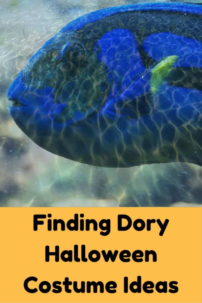 finding dory halloween costume ideas