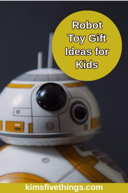 robot toy gift ideas for kids that love to code