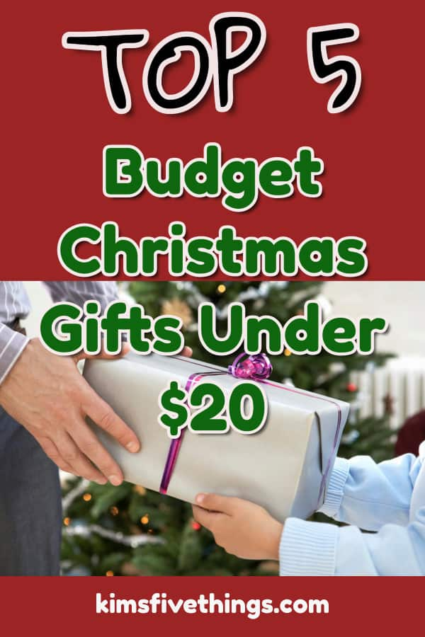 top 5 budget christmas gifts under 20 dollars