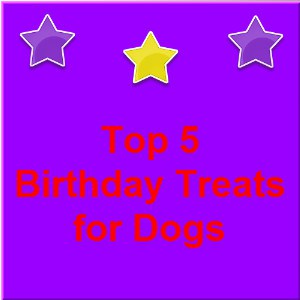 Birthday Treats for Dogs