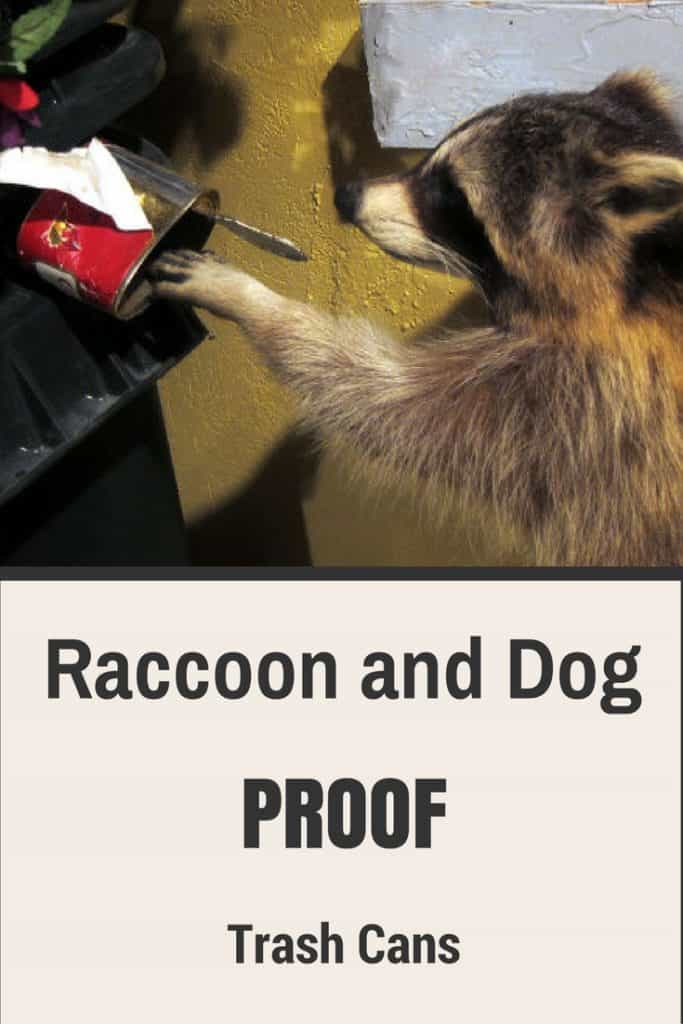raccoon and dog proof trash cans