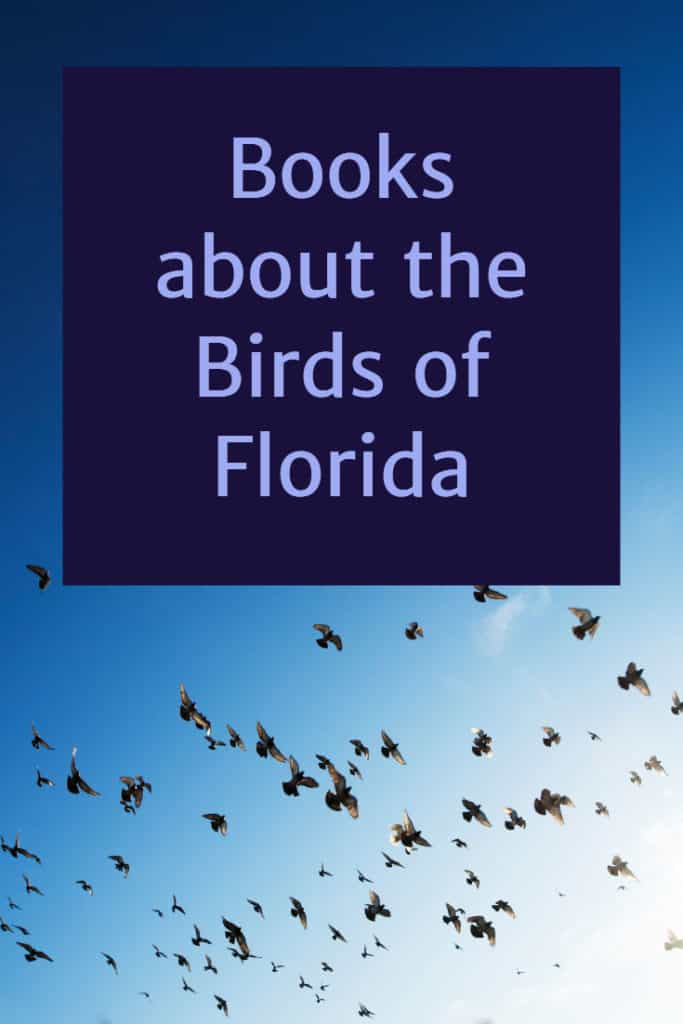Books About the Birds of Florida Gift Idea for a Bird Watcher