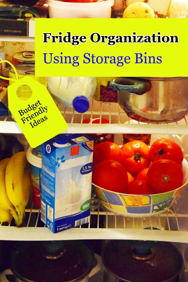 fridge storage ideas using plastic bins