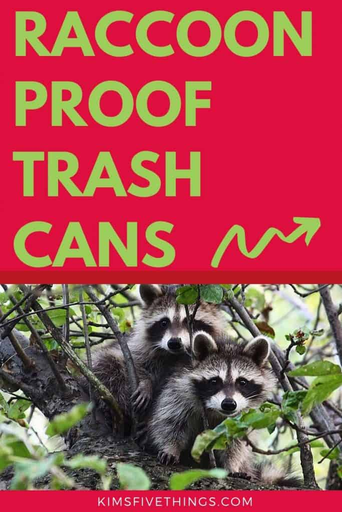 racoon and animal proof trash cans